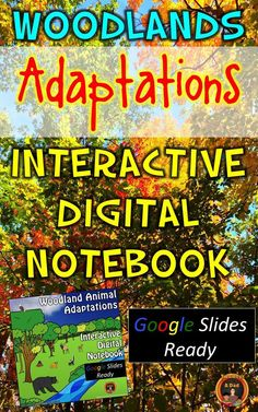Woodlands animal adaptations are explored in this 17 Google Slides Interactive Digital Notebook.  Students research and take notes from reliable and trusted websites and videos to answer questions about animal adaptations.  Interactive and can be done independently.  Check out this paid resource now!