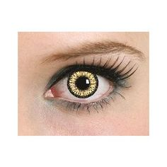 570 Best Sclera Contacts Images Cat Eye Contacts Eye