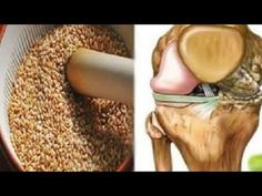 Seeds That Regenerate Tendons and Remove Pain On Their Knees Quites, Knee Pain, Natural Healing, Dog Food Recipes, Seeds, Health, Youtube, Pharmacy, Australia