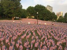 Memorial Day flags in Boston