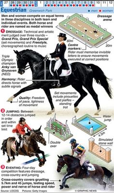 The Graphic News guide to each sport in the Olympics, from Archery to Wrestling Olympic Sports, Olympic Games, Olympic Equestrian, Summer Olympics, Horse Tack, Horse Riding, Dressage, Grand Prix, Archery