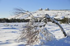 Ai Petri in winter