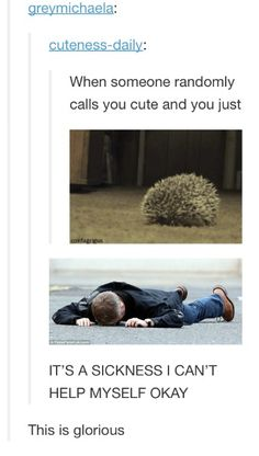 Hedgehog Jawn strikes again!