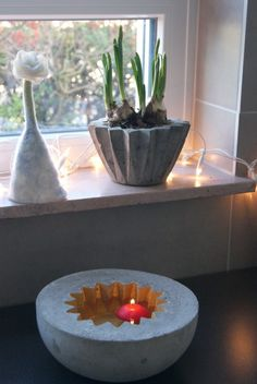 Schale und Blumenübertopf - toll!