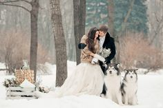 winter wedding, bride and groom, husky, snow