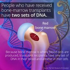 I learned something cool on the @curiositydotcom app: Bone-Marrow Transplant Recipients Have Two Sets of DNA