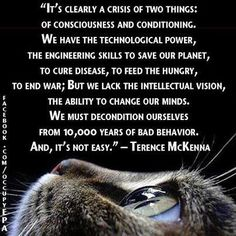 """""""We must decondition ourselves from years of bad behavior. And, it's not easy"""" - Terence McKenna Terence Mckenna, Our Planet, Thought Provoking, Beautiful Words, Beautiful Things, Inspire Me, Wise Words, Quotations, The Cure"""
