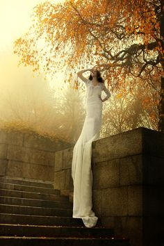 Memory Of Trees by Nadja Berberovic