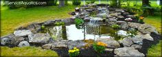 Koi pond with moss rock edging and cascading waterfall. Designed and installed by Full Service Aquatics of Summit, NJ 07901