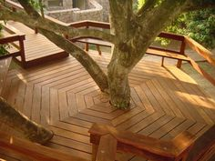 Beautiful decking around a tree. I love this idea however,get out the rake in the Fall.
