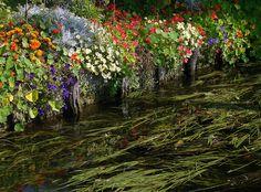 Hortillonnages d'Amiens 230908 05 - Amiens — Wikipédia Floating Garden, Amiens, France, Painting, Art, Blog, Xmas, World, Parisians