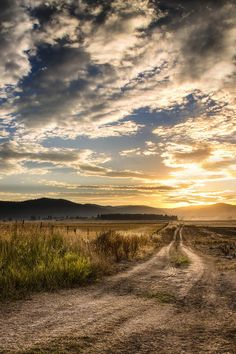 This dirt farm road leads to a spectacular sunset each evening in the late summer. Just outside of Kalispell, Montana, the wheat fields in West Valley are being harvested, sending out golden grain dust which fills the sky and creates a lovely haze over the foothills in the west. Click through to see the full image. #Montana #art #nature #photography