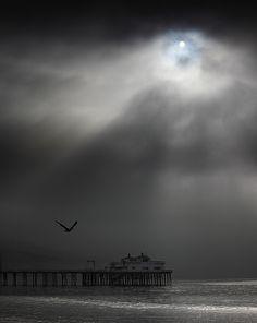 Fog Lights, Malibu Ca,  By:Pacheco