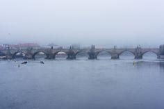 misty charles bridge - misty vltava on daily commute