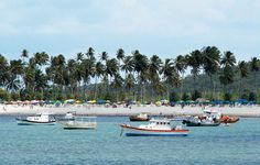 Foto da Praia de Suape