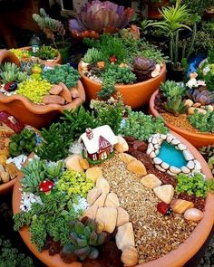 If you are looking for Diy Fairy Garden Design Ideas, You come to the right place. Below are the Diy Fairy Garden Design Ideas. This post about Diy Fairy. Indoor Fairy Gardens, Fairy Garden Plants, Mini Fairy Garden, Fairy Garden Houses, Gnome Garden, Miniature Fairy Gardens, Fairy Gardening, Fairies Garden, Miniature Plants