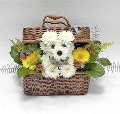 Puppy Bouquet Instructions Watch The Video Tutorial Unique Flowers, Silk Flowers, Beautiful Flowers, Art Floral, Floral Design, Creative Flower Arrangements, Floral Arrangements, Ikebana, Puppy Flowers