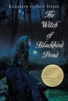 The Witch of Blackbird Pond by Elizabeth George Speare.  Just re-read this one since my son is now reading it for school:-)