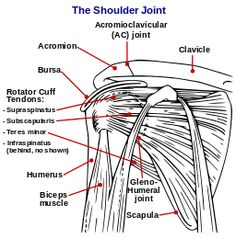 Suffering from a shoulder injury in the Dallas area? Our comprehensive treatments will get you back to full health!