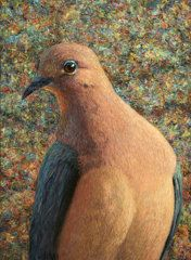 Painting - Dove by James W Johnson