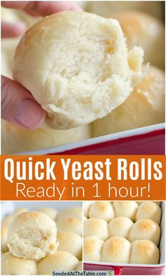 With this quick yeast rolls recipe, you can have homemade rolls ready in one hour! These easy dinner rolls are buttery, fluffy, and so wonderful! Recipe For Homemade Rolls, Homemade Yeast Rolls, Homemade Buns, Homemade Dinner Rolls, Quick And Easy Roll Recipe, Homemade Breads, Quick Dinner Rolls, No Yeast Dinner Rolls, Dinner Rolls Recipe