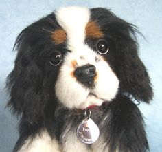 Charles Spaniel Cavalier King Charles And King Charles On