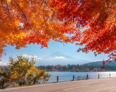 Romantic autumn road by Jirawat Plekhongthu - Photo 188872999 / 500px