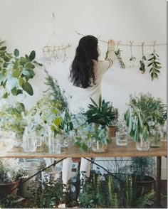 Plants give oxygen and recycle air, evoke serenity, and circulate healing energy. The more plants you have the better. In feng shui, healthy plants and flowers bring in new opportunities.