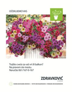 Ocekujemo Vas FB https://www.facebook.com/rasadnik.zdravkovic