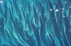 The Waters of the Bahamas - August 14 | 10 Breathtaking Recent Photos Of Earth From Space