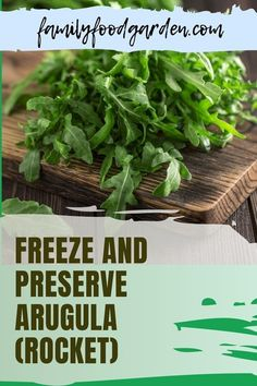 Arugula is a popular addition to any salad. Family Food & Garden's guide about this spicy green tells you everything you need to know about this cold weather-friendly herb. Also known as rocket or roquette, it does not thrive in warm weather. Follow our tips and strategies on how to freeze and preserve arugula to include in your meals when you won't find any in the garde and you'll be happy all year-round. Download our guide here… #arugulaorrocket #freezearugula #pres Regrow Vegetables, Healthy Fruits And Vegetables, Homemade Sauce, Preserving Food, Arugula, Freeze, Preserves, Warm Weather, Family Meals
