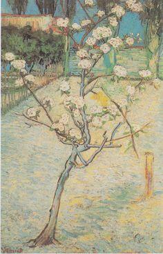 Van Gogh - Blühender Birnbaum.jpeg