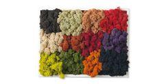 Tutte le tonalità dei MOSScolours - All the MOSScolours  More info: www.themossdesign.com  #MOSS