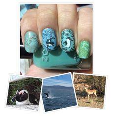 animals#nails #nailart #moyouLondon #nailstamping