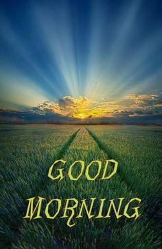 Good Morning Friends Images, Happy Good Morning Quotes, Good Morning Cards, Good Morning Images Download, Good Morning Post, Good Morning Picture, Morning Pictures, Good Morning Wishes, Morning Greeting