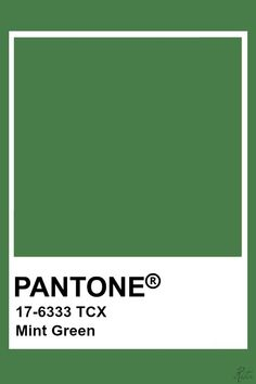 Pantone Mint Green Pantone Tcx, Pantone Swatches, Color Swatches, Green Pallete, Colour Pallete, Colour Schemes, Pantone Color Chart, Pantone Colour Palettes, Pantone Colours