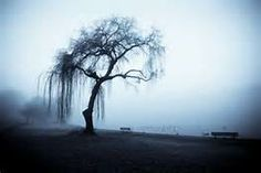 Ominous scary Tree