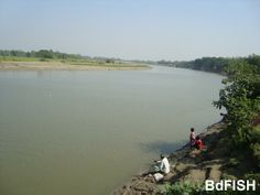 Bangali river