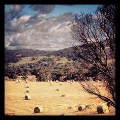 The Avon Valley