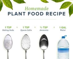 homemade plant food recipe Sometimes plants get hungry after it's used up all its soils nutrients. Thankfully, you can make homemade plant food to keep your plant happy and healthy! Organic Gardening, Gardening Tips, Vegetable Gardening, Hydroponic Gardening, Gardening Supplies, Indoor Gardening, Hydroponics, Homemade Plant Food, Homemade Fertilizer For Plants