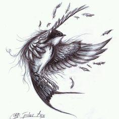 Bird Drawing art beautiful feather creative sketch tattoo design