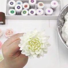 It's easy to pipe buttercream flowers, closed to look real flowers, with using Butterbe's handmade piping tips. #butterbe #koreancake #sweet #buttercream #buttercreamcake #koreastyle #flowercake #koreanbuttercream #flower #dessert #cake #milkflower #koreanfood #wedding #rose #韓式唧花 #韓式唧花蛋糕 #kek #sweet #lezat #cakeporn #烘焙 #开花 #蛋糕 #開花 #羅斯 #美味