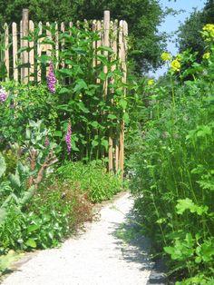 Doorkijkje natuurrijke tuin www.maiktuinen.nl
