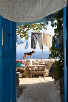 Watch the washing Donoussa island Cyclades Us Sailing, Beautiful Dream, Eurotrip, Ancient Greece, Greece Travel, Greek Islands, Landscapes, Laundry, Fat