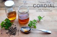 Valerian Mint Cordial recipe by pixiespocket for the herbal academy.