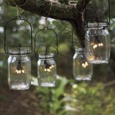 DIY tree lights modern outdoor lighting by Plow & Hearth