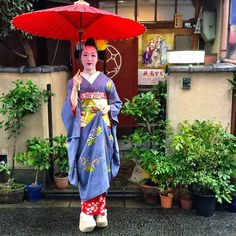 October 2014: maiko Tomitae outside her okiya Tomikiku by @gilliangladrag on Instagram
