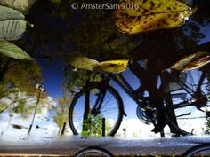 https://flic.kr/p/Ms6toz | ...Years... | Unedited shot of a puddle reflection in Amsterdam. Taken with my Sony HX400V. No editing, no magic tricks, no Photoshop :)   Ten years ago I've posted my first wicked pictures of Amsterdam on my Flickr page, and soon afterwards the first wicked reflections of the best city in the world followed, from there on it was just another gazillion or so babysteps to get to the point where I am today, the Master of all puddles, the wickedest Reflectah around…