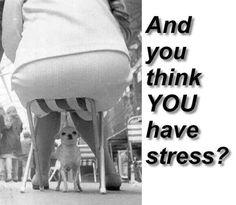 A lot of stress !