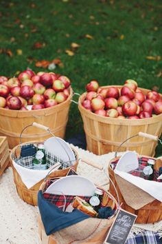 only a few more weekends to go apple picking and make a delicious pie!